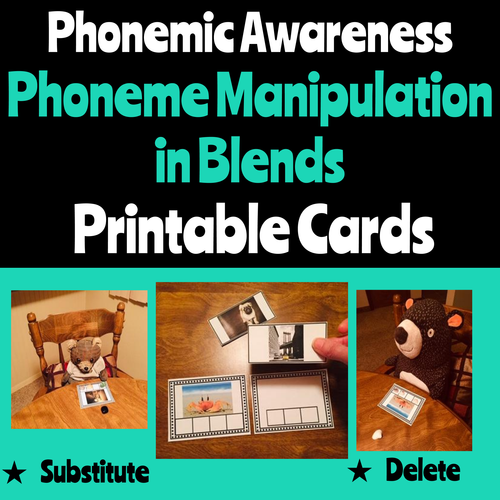 Phonemic Awareness Picture Cards for Initial Consonant Blends