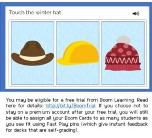 Modified Nouns - Level 2 - Winter Theme - Boom Cards™