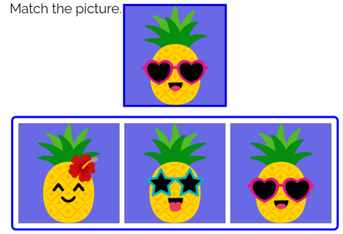 Match the Picture: Summer Theme Boom Cards™