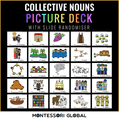 Montessori  Collective Noun Bingo   PowerPoint + Boom Cards   3 Part Cards