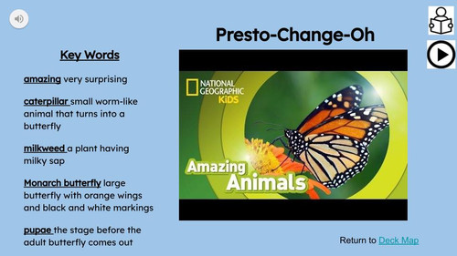 Monarch Butterflies Informational Text Reading Passage and Activities