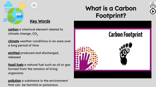 Carbon Footprint Informational Text Reading Passage and Activities
