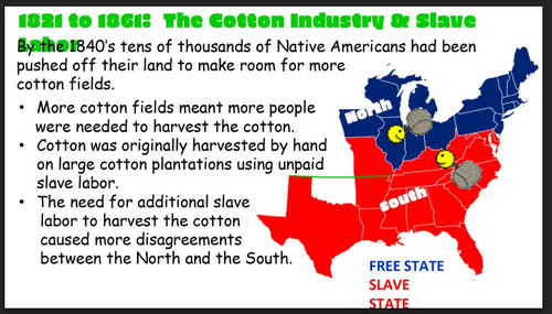 Texas History: Cotton and Cattle Industries