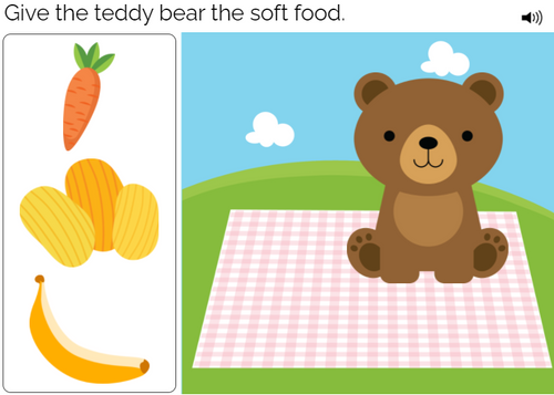 Modified Nouns - Level Two - Interactive Deck - Teddy Bear Picnic - Boom Cards™