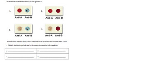 Blood Typing and Heredity Reading and Writing Activity
