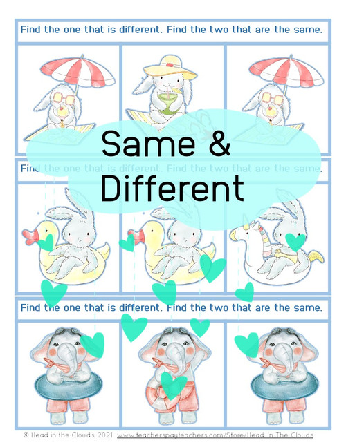 Same & Different - Summer Animals - Matching & Find the Difference