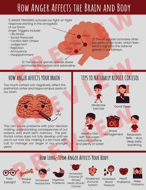 Anger Management - Emotional Regulation - Frustration - How Anger Affects The Brain & Body