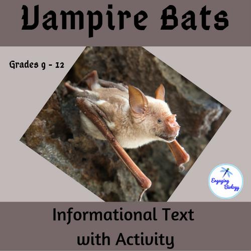 Vampire Bats - Informational Text and Activity