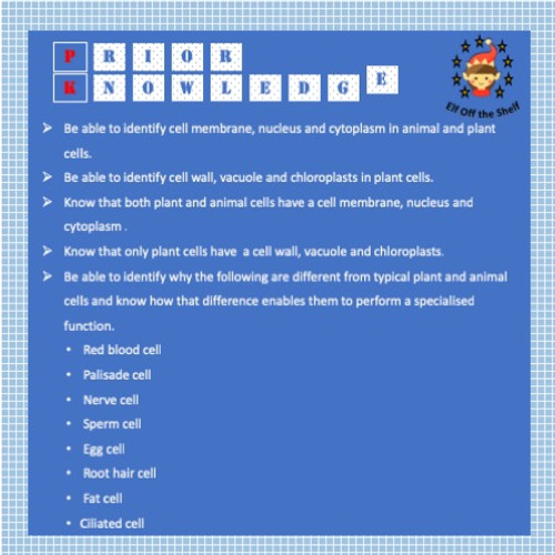 Plant and Animal Cells - 42 Question Card Sort Team Game - FREE