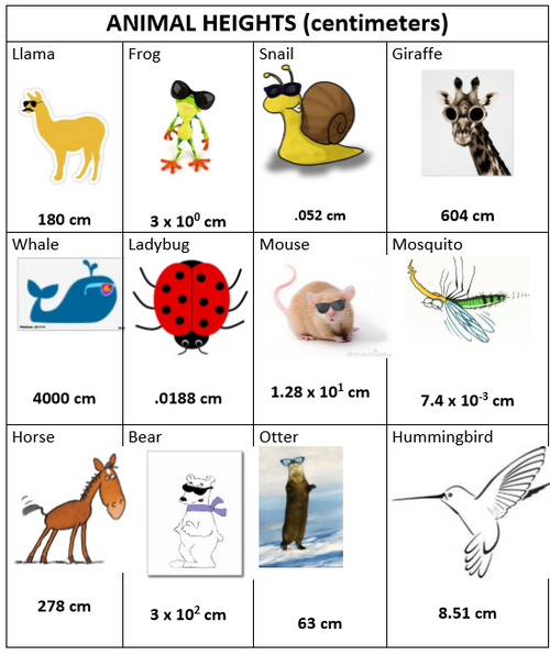 Scientific Notation Project: Animal Heights