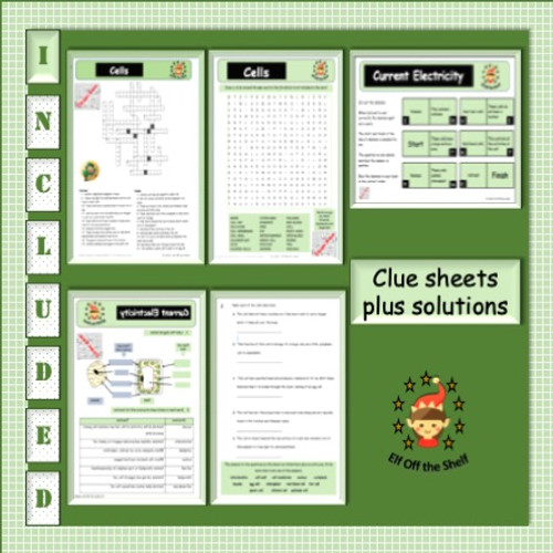 Plant and Animal Cells - Structure, Differences, Specialisation - Escape Room