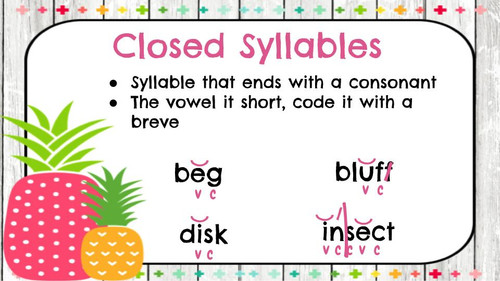 Phonics Rules & Prefixes/Suffixes Posters (pineapple theme)