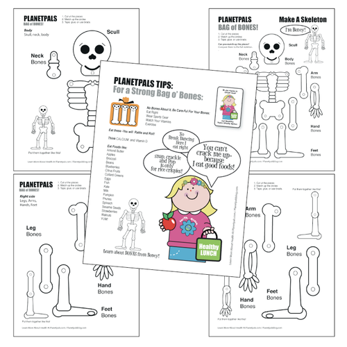 Planetpals   HEALTH Science Skeleton Toy Lesson Assemble Learn Healthy Foods Vitamins Bones