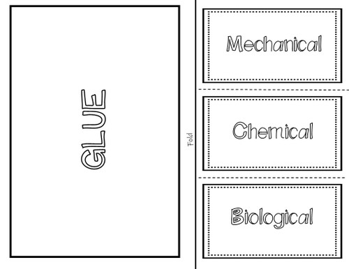 Weathering (Mechanical, Chemical, Biological) - Interactive Notebook / Foldable