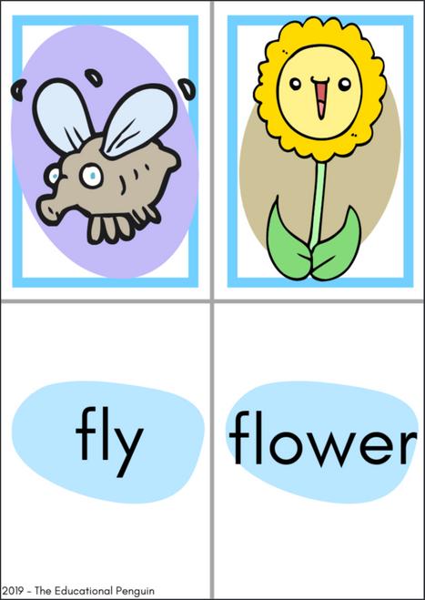 Flash Cards - BLENDS - 'bl', 'br', 'cl', 'cr', 'fl', 'fr', 'gl', 'gr'