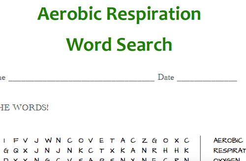 Respiration Word Searches (4 word searches!)
