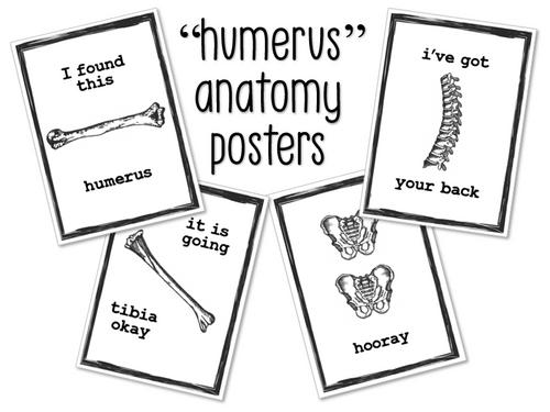 Funny Anatomy Posters- FREEBIE!