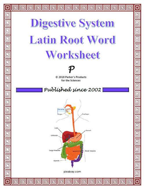 Latin Root Word Conversion Worksheet Bundle of Medical Terms for Human  Anatomy & Physiology (21% Savings!)