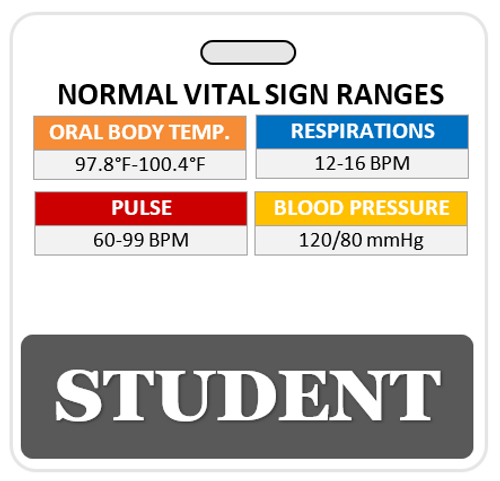 Badge Buddies- CUSTOMIZABLE!  Great for Clinical Internship Students!