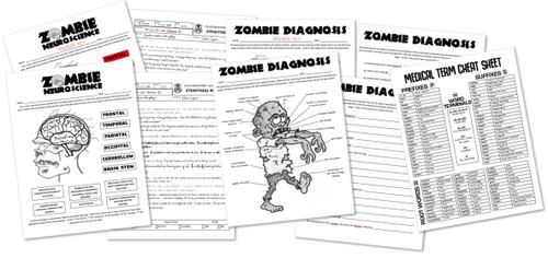 Zombie A&P- Neuroscience, Diagnosis and Medical Terminology! Great for October!