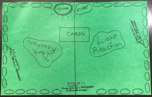 Photosynthesis Mania!!  A Fun & Engaging Board Game for the Biology, Honors Biology, or AP Biology Classroom