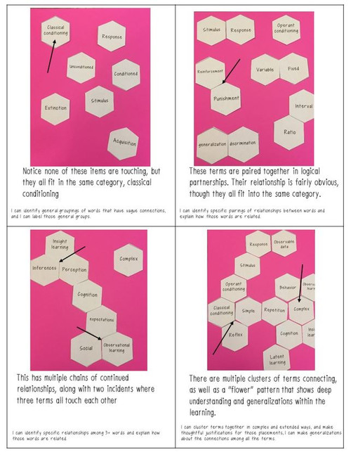Psychology Year & Unit Review Hexagon Card Sort