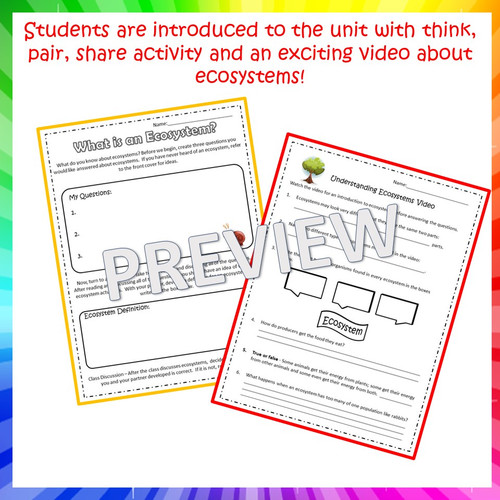 Ecosystems: Complete 5th Grade Unit (NGSS Aligned)