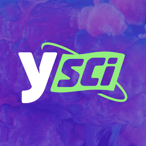 image-logo-ysci.jpg