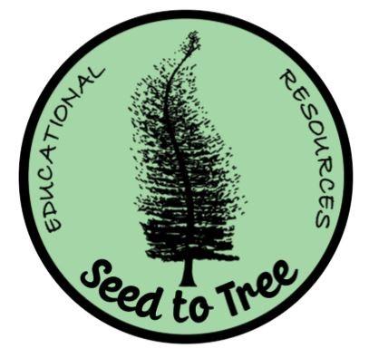 seed-to-tree.jpg