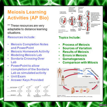 Meiosis Learning Activities For Ap Biology Distance Learning Amped Up Learning