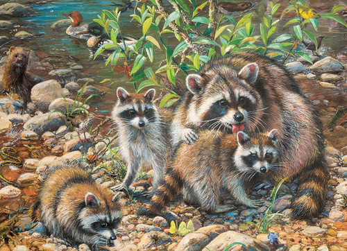 350 Pc. Family Puzzle-Raccoons