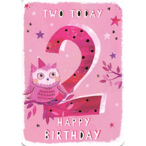 Two today birthday card pink with pink owl