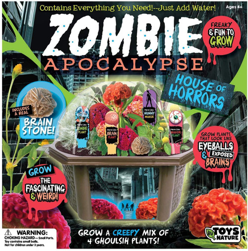 Zombie terrarium box shown