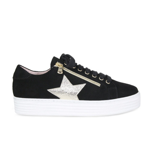 Star: Black Suede & Gold Leather