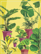 The Decade-ence of Houseplants