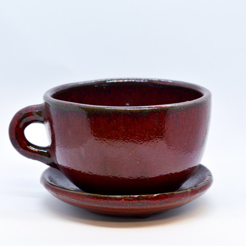 """5"""" Coffee Cup Planter"""