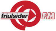 FRIULSIDER SpA (FM)