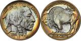 Buffalo Nickels: History and Values