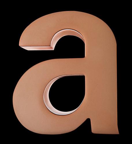 Duplicate Bronze ADDY Award
