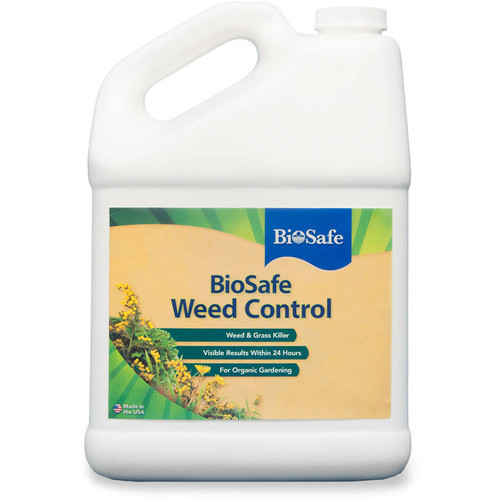 Weed Control Concentrate 1 Gallon