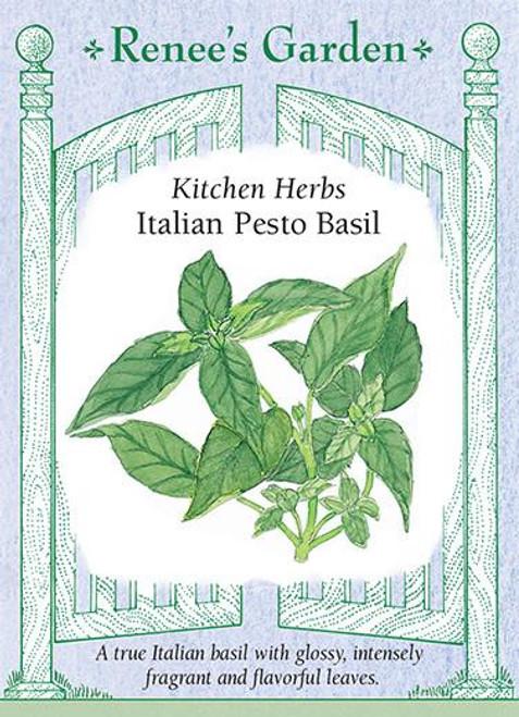 Basil Italian Pesto