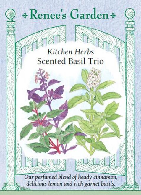 Basil - Scented Trio