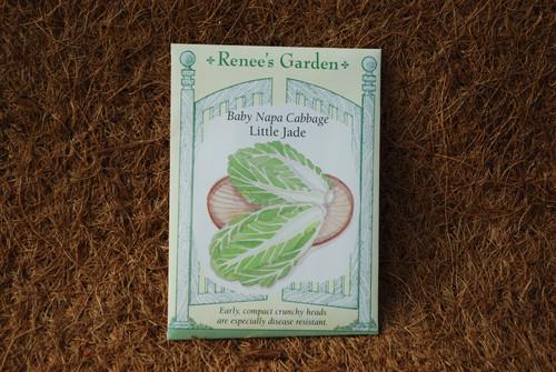 Cabbage Baby Napa Little Jade