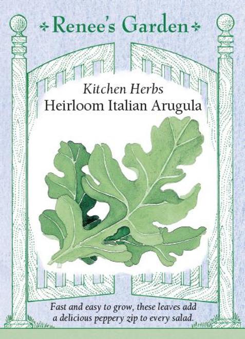 Arugula Italian