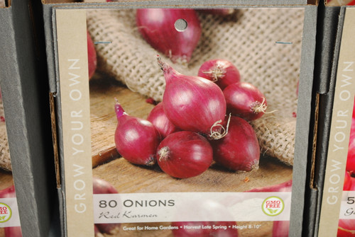 Onions Red Karmen