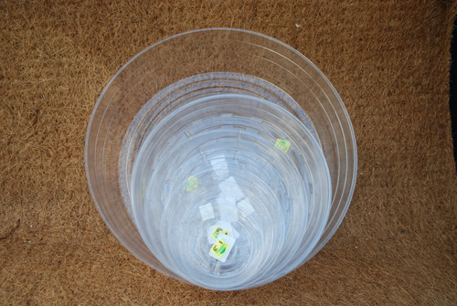 """10"""" Clear Plastic Saucer"""