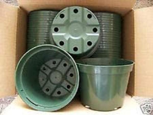 "5 1/2"" Round Green Azalea Pot 351/Cs"