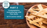 [Video Series] Part 3: Protect Yourself From Negativity w/Palo Santo Essential Oil