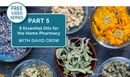 [Video Series] Part 5: Nine Essential Oils For Your Home Pharmacy