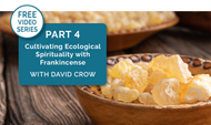 [Video Series] Part 4: Cultivate Ecological Spirituality w/Frankincense